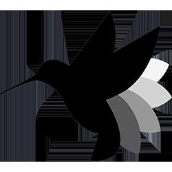 Hummingbot logo image